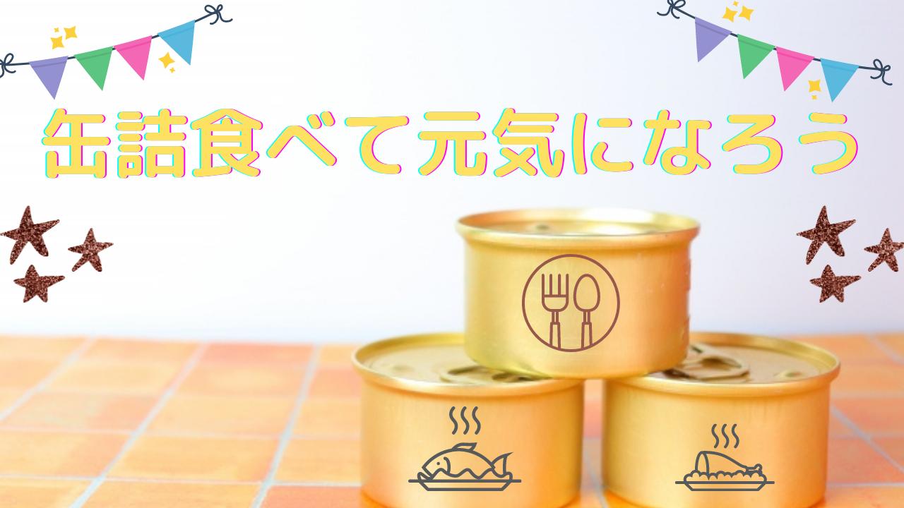 ドッグフード 缶詰