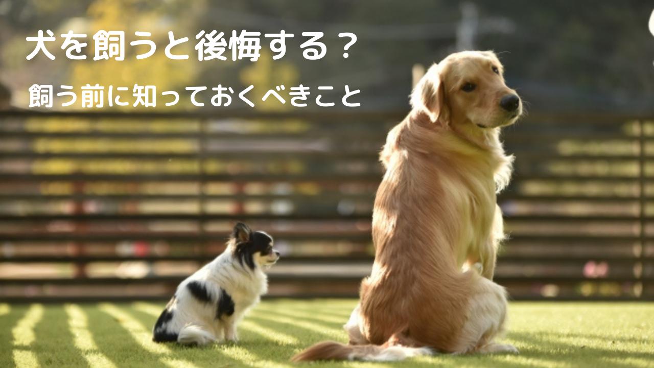 犬 飼う 後悔