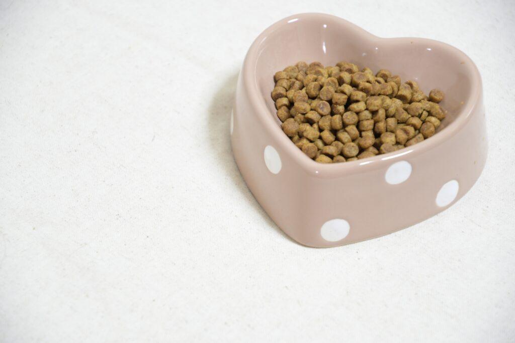 ドッグフードの安全な保存方法|愛犬の食欲もアップ!