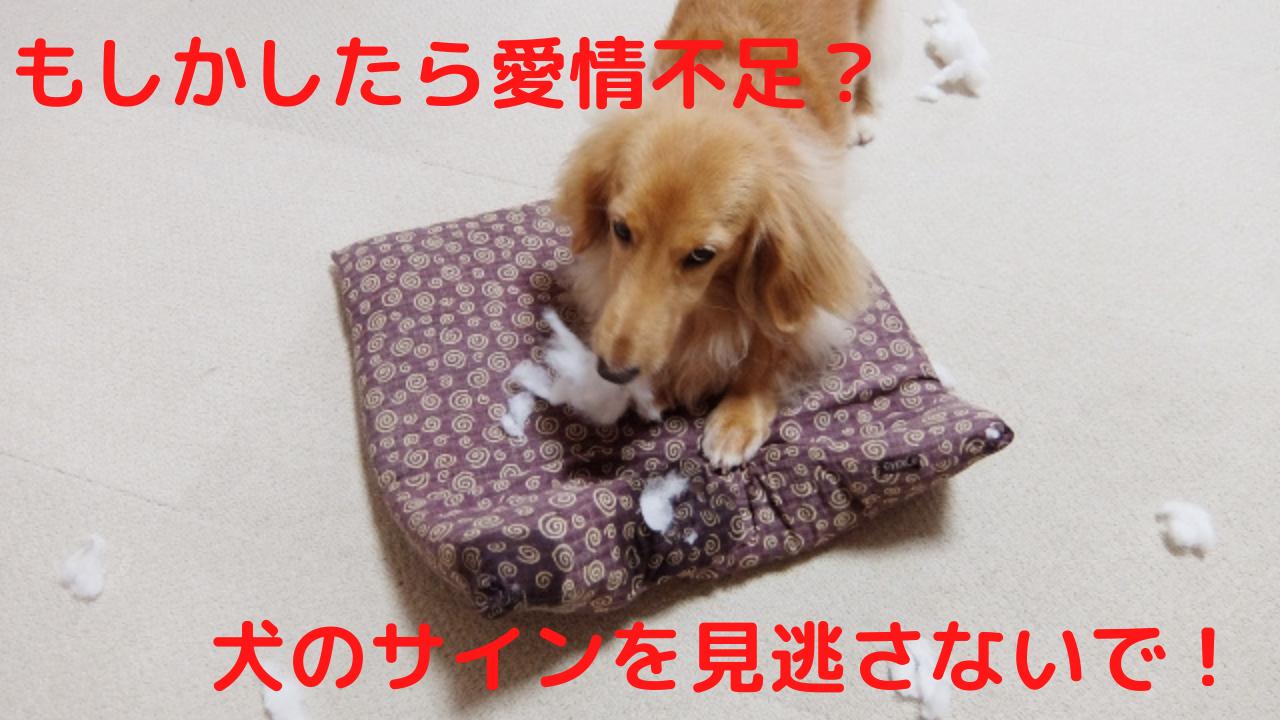 犬 愛情不足 サイン